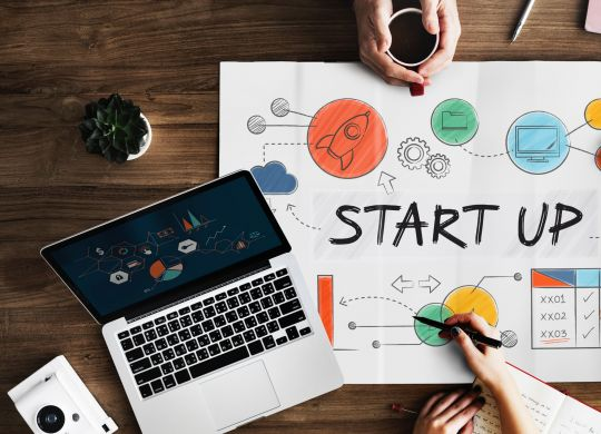 Diagram Business Plan for a Startups