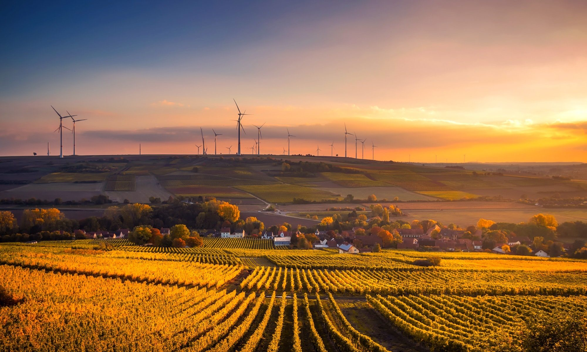 Agricultural CleanTech Investments