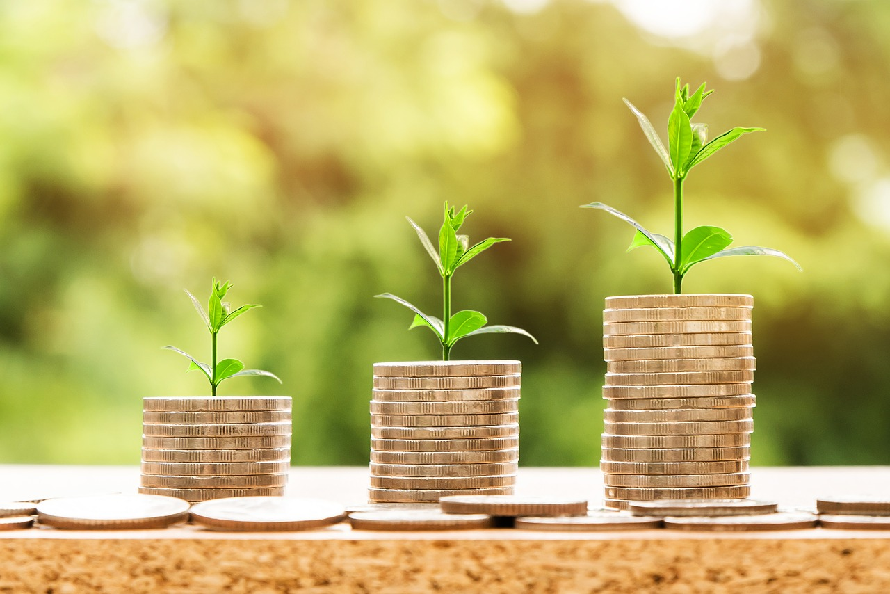 Becoming an ESG Investor - growing your money