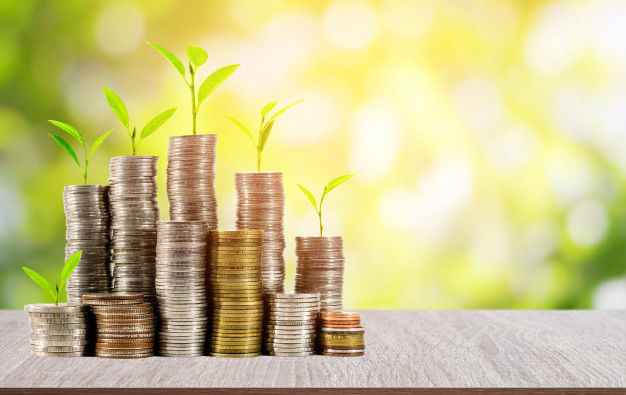 young plants and coins: impact investing