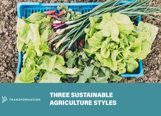 Three Sustainable Agriculture Styles