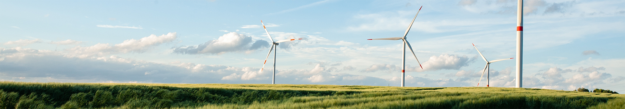 Renewable Energy Turbines | WalterSchindler.com