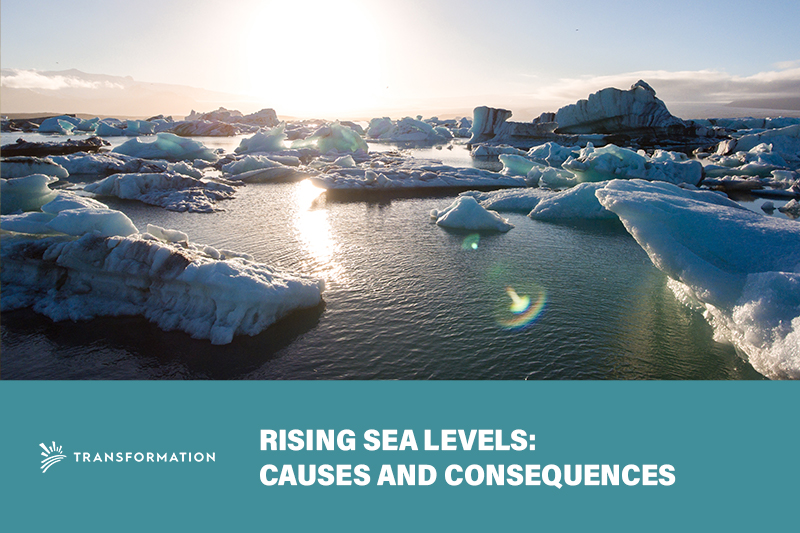 Rising Sea Levels: Causes and Consequences | WalterSchindler.com