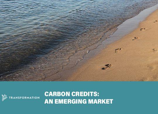 Carbon Credits concept