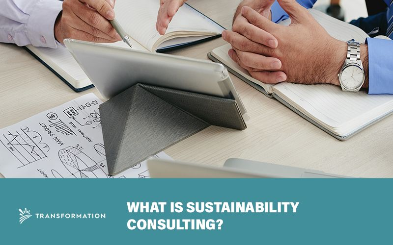 sustainability consulting concept